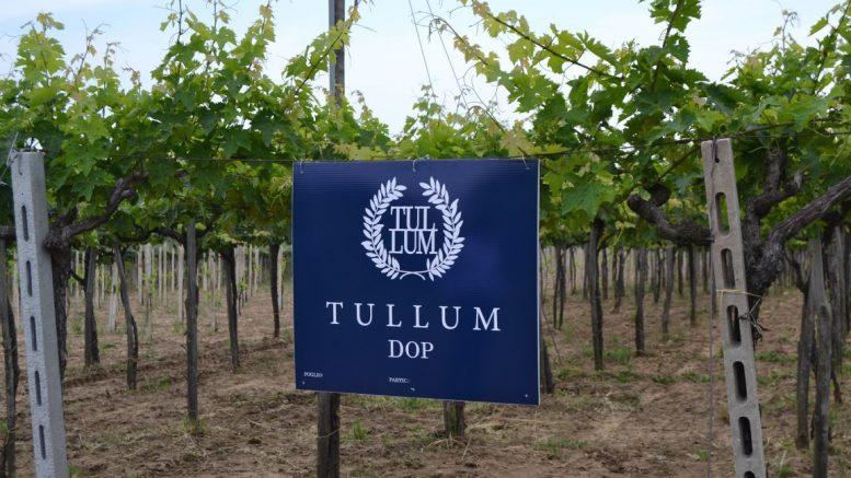 Vini: la DOP Tullum diventa ufficialmente DOCG