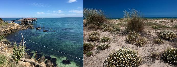 Costa dei Trabocchi: Fossacesia e San Salvo acque di balneazione eccellenti