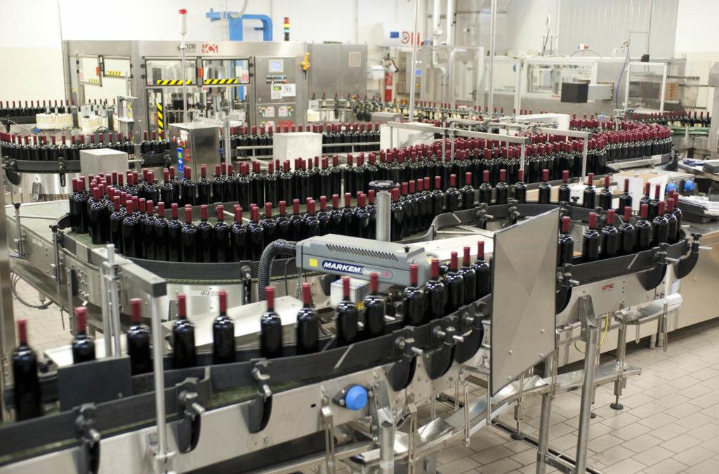 """Aspettando la vendemmia, ci sono 38 milioni di ettolitri di vino in """"Cantina Italia"""""""