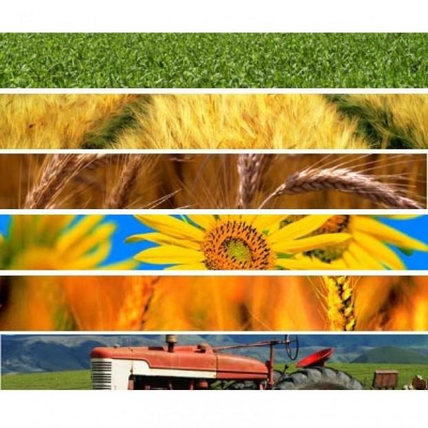 Distretti del cibo, scatta la proroga al 18 maggio 2020