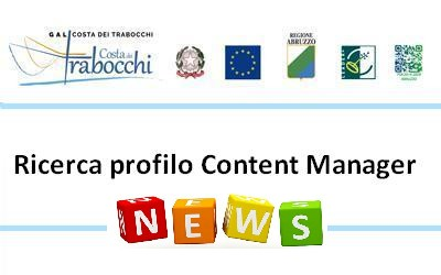 Termini Ricerca profilo Content Manager