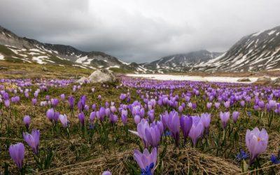 Tra i paesaggi primaverili più belli d'Italia c'è anche l'Abruzzo