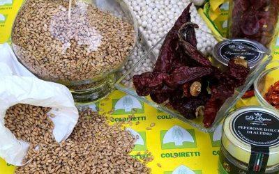 La rivincita degli agriturismi: l'Abruzzo prova a trainare le vacanze green