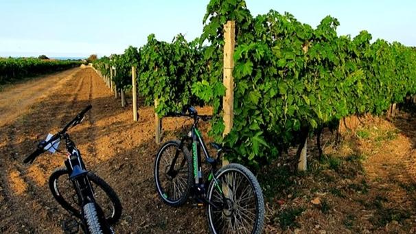 In bici tra le vigne e la Costa dei Trabocchi per un turismo lento